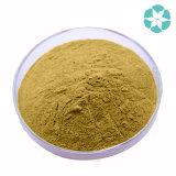 Extrait de Moschata d'extrait/Cucurbita de graine de citrouille