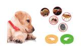Colar não tóxico natural da pulga & do tiquetaque para cães