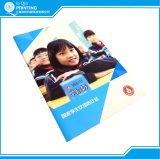 Folleto Folleto Folleto folleto en línea de servicios de impresión