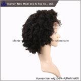 De in het groot Zwarte Korte Kroezige Menselijke Pruik Afro van de Kleur