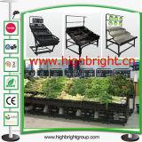 Supermarkt-Geräten-Gemüse-und Frucht-Bildschirmanzeige-Zahnstangen
