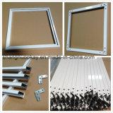 Kitchen Cabinet Door (SN634)のための熱いSale Silver Anodized Aluminium Profile
