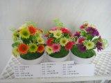 Fiori artificiali del crisantemo Gu-Xy15011-5