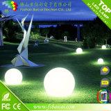 Bola del jardín de la iluminación/bolas al aire libre de la decoración Balls/Plastic LED