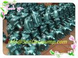 (762D-21c-000) Mariene Dieselmotor Weichai die de Ruwe Pomp van het Overzeese Water koelen