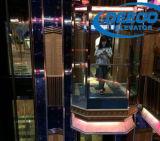 Elevación de visita turístico de excursión de la observación de la cabina de cristal