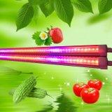 Rojo azul luz de color T8 1500mm 28W 5FT LED crecer tubo de luz