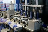 Kleinkapazitätshaustier-Flaschen-durchbrennenformenmaschine