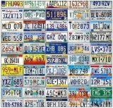 Blocco per grafici della targa di immatricolazione degli S.U.A. del commerciante automatico di buona qualità