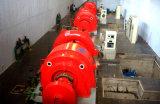 Напряжение тока 100~800kw/Hydropower/Hydroturbine гидро блока генератора турбины (воды) низкое