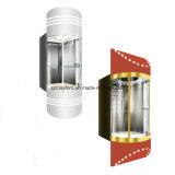 Ascenseur panoramique de cabine en verre automatique avec le guide optique décoratif