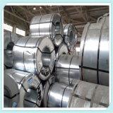 ASTM 304 310S a laminé à froid la bobine/courroie/bande d'acier inoxydable