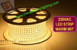 luz de tira flexible impermeable de 220V RGB SMD 5050 LED