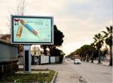 Коробка окружающей среды содружественная напольная светлая с высокой яркостью СИД для индикации рекламы