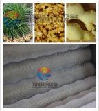 ポテトのPeeling&の洗濯機、メロンの皮及び洗濯機