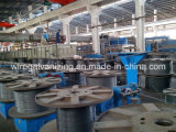 Zinco Plating Machine para Steel Wire