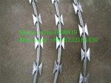China-Lieferanten-Qualität galvanisierte Rasiermesser-Stacheldraht-/Concertian Draht-Ring/Ziehharmonika-Rasiermesser