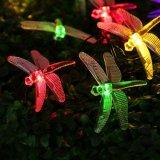 Luz da corda do diodo emissor de luz com libélula