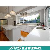 Kleiner Küche-Schrank-Möbel-Entwurf mit Melamin-Ende (AIS-K167)