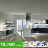 Wohnungs-Küche, die Hersteller-Küche-gesetzte Geräte umgestaltet