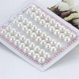 11-12mmの大きいサイズボタンの形AAAの等級の自然な淡水の緩いマッチペアの真珠のビード