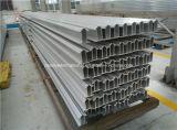 Carril del Perfil-Aluminio del carril del conductor del tránsito tercer