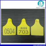 Tag de orelha animais com número da impressão de laser para o seguimento da identificação dos carneiros do gado