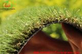 [درك بروون] مغزول مجمّدة يرتّب عشب حصيرة