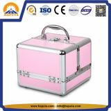 Het roze Geval van de Trein van de Opslag van de Schoonheidsmiddelen van de Make-up van het Aluminium (hb-2010)