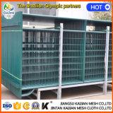 Frontière de sécurité provisoire de treillis métallique de Chambre de prairie de syndicat de prix ferme en acier portatif d'herbe