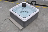 De Gekko van Kingston/Balboa System Hot Tub SPA jcs-12