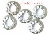Rondelle de freinage de zinc de DIN6798j Blue&White