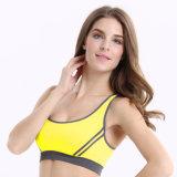 Vêtements pulsants de yoga de séchage rapide de soutien-gorge de sport de qualité