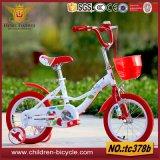 Spielzeug-Wasser-Gewehr auf Fahrrad-Modell für Kind-Baby-Spielzeug 2016
