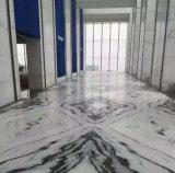 Bianco di marmo bianco di Guobao della lastra del panda