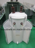D11 M Single Olie-Ondergedompeld Distribution Transformer