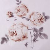 La materia textil Oeko de seda del hogar de la nieve de Taihu certificó el conjunto inconsútil hermoso del consolador del Duvet