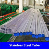 Steel inoxidável Tube com ASTM A213 310 310S 321