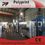 Machine en plastique de Thermoforming de tasse avec la grande capacité (PPTF-70T)