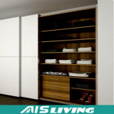Knell Sliding Door Wood Grain Wardrobe for Bedroom (AIS-W023)