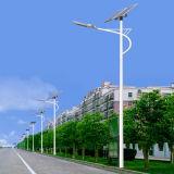уличный свет солнечной силы СИД рукоятки 9m одиночный (JINSHANG СОЛНЕЧНЫЕ)