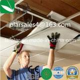 De lichtgewicht Binnenlandse Raad van het Plafond (het Comité van de Raad van het Silicaat van het Calcium)