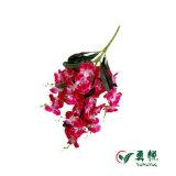 최신 판매 공장 가격 아름다운 나비 난초 인공 꽃 10060