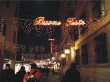 Feenhafte LED-Zeichenkette beleuchtet Feiertags-Hauptdekoration