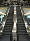 Good Quality를 가진 Dsk Escalator