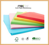 documento colorato Assorted stampa offset di formato di 80GSM A4 (CMP-A4-50TM-80G)