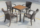 Самомоднейшее Design Dining Chair и Table с Teak Wood Top/Leisure Outdoor Furniture (BP-3030)