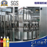 Automatische Saft-Flaschen-Füllmaschine beenden