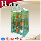Mini tenda della serra di Haylite con l'alta qualità sulla vendita