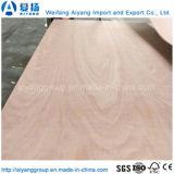 Contre-plaqué commercial de cèdre de crayon de faisceau de bois dur de Shandong